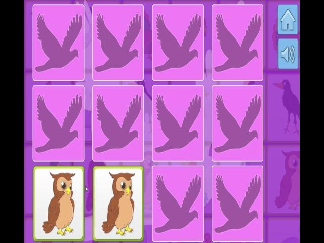 Birds Memory
